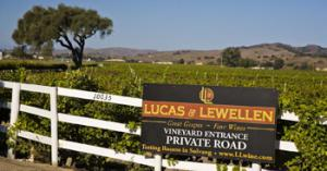 The scenic Los Alamos Vineyard