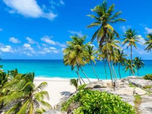Beautiful island image representing Lucas & Lewellen's Caribbean Island wine cruise