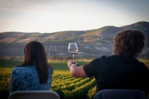 A photo of guests toasting at a vineyard